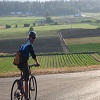 Saanich Peninsula Cycling Tour