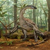 Royal BC Museum Dinosaurs