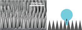 Nanostructures Lift the Fog