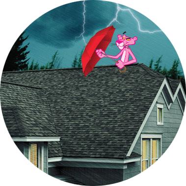 Cobranded storm materials
