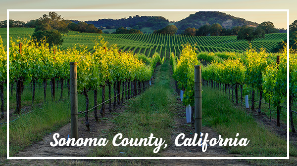Sonoma County, California