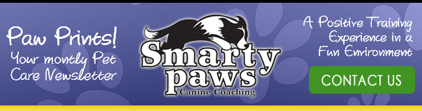 Contact Smarty Paws!