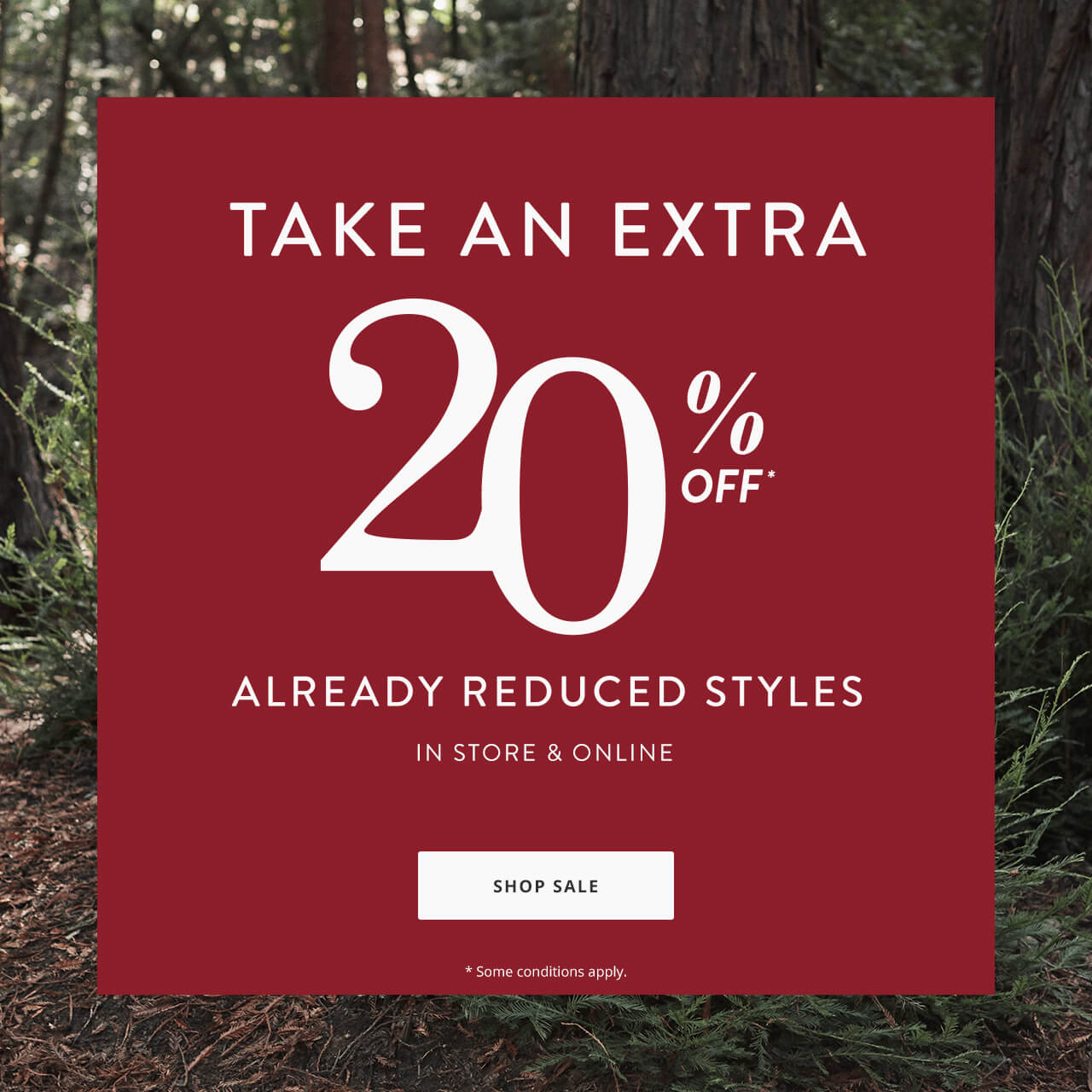 Take an Extra 20% Off*