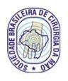 BSSH_Brazil_logo