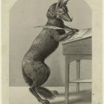 images_nypl_org-fox-writing-150x150