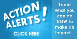 banner-home_action-alerts_C