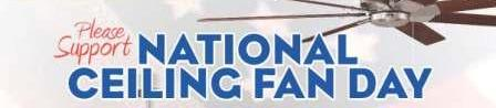National Ceiling Fan Day Flyer - BI-2 - Copy