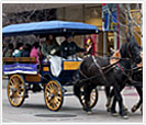horse-and-carriage-ride