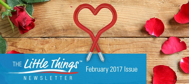 The Little Things - February 2017