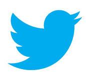 Twitter logo_January 2013