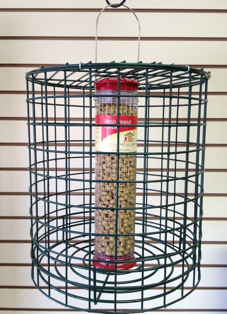on guard cage for peanut feeder