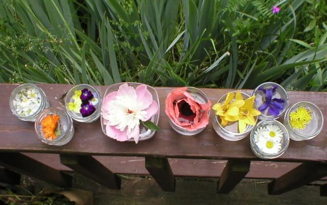 floweressences2