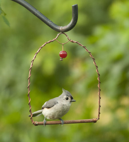 Kathy Millers Tufted Titmouse