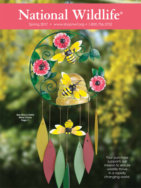 NWF_Spring2COVER_1-17