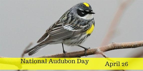 Natl Audubon Day 4-26-17